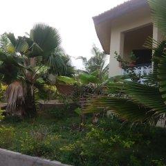 Отель Moree Paradise Ocean Resort фото 3