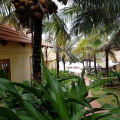Отель Freebeach Resort фото 7