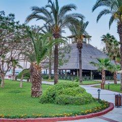 Отель Amara Club Marine Nature - All Inclusive фото 9