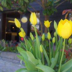 Отель Yusuf Pasa Konagi Стамбул фото 3