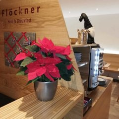 Отель Flöckner B & B Австрия, Зальцбург - отзывы, цены и фото номеров - забронировать отель Flöckner B & B онлайн в номере