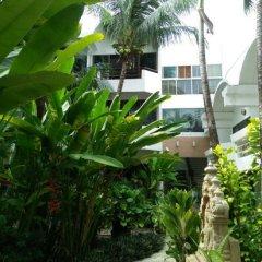 Отель Safari Beach Hotel Таиланд, Пхукет - 1 отзыв об отеле, цены и фото номеров - забронировать отель Safari Beach Hotel онлайн