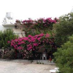Отель Studios Marianna Греция, Эгина - отзывы, цены и фото номеров - забронировать отель Studios Marianna онлайн фото 6