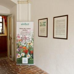 Отель Adalbert Ecohotel Чехия, Прага - 3 отзыва об отеле, цены и фото номеров - забронировать отель Adalbert Ecohotel онлайн интерьер отеля фото 2