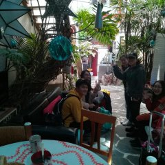 Hostel Mexico Df Airport Мехико питание фото 2