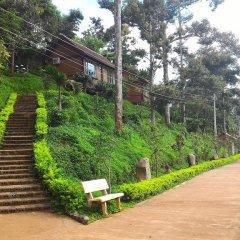 Отель Dau Nguon Resort Вьетнам, Буонматхуот - отзывы, цены и фото номеров - забронировать отель Dau Nguon Resort онлайн приотельная территория фото 2