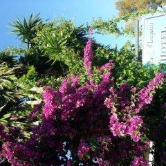 Отель Villa Margarit Албания, Саранда - отзывы, цены и фото номеров - забронировать отель Villa Margarit онлайн фото 5