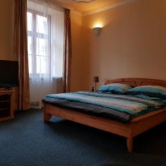 Отель Barbarossa Чехия, Хеб - отзывы, цены и фото номеров - забронировать отель Barbarossa онлайн комната для гостей фото 2