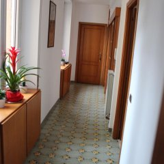 Отель Chez Liviana интерьер отеля фото 2
