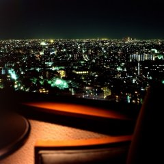 Отель Metropolitan Tokyo Ikebukuro Токио балкон