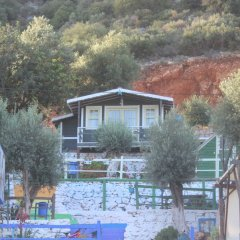 Can Mocamp Турция, Патара - отзывы, цены и фото номеров - забронировать отель Can Mocamp онлайн бассейн