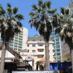 Гостиница Баунти в Сочи 13 отзывов об отеле, цены и фото номеров - забронировать гостиницу Баунти онлайн городской автобус