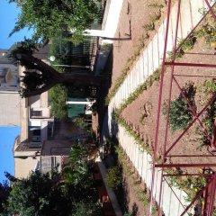 Отель d'Orleans Италия, Палермо - отзывы, цены и фото номеров - забронировать отель d'Orleans онлайн фото 8