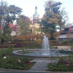 Отель Pensjonat Eden Польша, Сопот - отзывы, цены и фото номеров - забронировать отель Pensjonat Eden онлайн фото 5