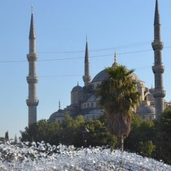Grand As Hotel Турция, Стамбул - 1 отзыв об отеле, цены и фото номеров - забронировать отель Grand As Hotel онлайн