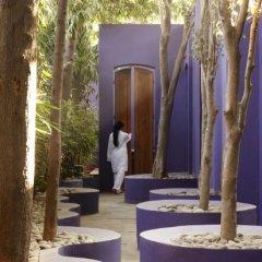 Отель The Roseate New Delhi фитнесс-зал фото 2