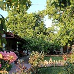 Бутик-отель Ephesus Lodge фото 9