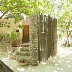 Отель Taj Coral Reef Resort & Spa Maldives Мальдивы, Северный атолл Мале - отзывы, цены и фото номеров - забронировать отель Taj Coral Reef Resort & Spa Maldives онлайн фото 9