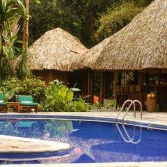 Отель The Lodge at Pico Bonito с домашними животными