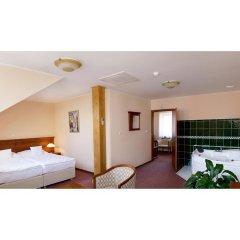 Отель Wellness Hotel Ida Чехия, Франтишкови-Лазне - отзывы, цены и фото номеров - забронировать отель Wellness Hotel Ida онлайн комната для гостей фото 2