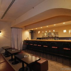 Hotel Nikko Huis Ten Bosch гостиничный бар