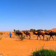 Отель Auberge Africa Марокко, Мерзуга - отзывы, цены и фото номеров - забронировать отель Auberge Africa онлайн спортивное сооружение