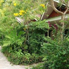 Отель The Krabi Forest Homestay фото 19