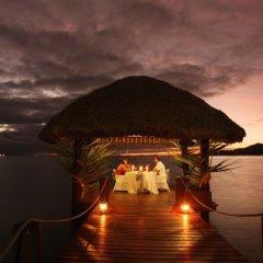Отель Musket Cove Island Resort & Marina фото 5