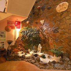 Отель Green Garden Homestay интерьер отеля фото 2