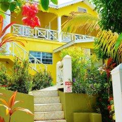 Отель Beachcombers Hotel Сент-Винсент и Гренадины, Остров Бекия - отзывы, цены и фото номеров - забронировать отель Beachcombers Hotel онлайн фото 21