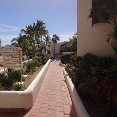 Отель Park Royal Homestay Los Cabos. Мексика, Сан-Хосе-дель-Кабо - отзывы, цены и фото номеров - забронировать отель Park Royal Homestay Los Cabos. онлайн фото 8