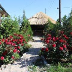 Отель Happy Nomads Yurt Camp Кыргызстан, Каракол - отзывы, цены и фото номеров - забронировать отель Happy Nomads Yurt Camp онлайн фото 16