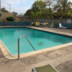 Отель Kingston Luxury Condo Apartment Ямайка, Кингстон - отзывы, цены и фото номеров - забронировать отель Kingston Luxury Condo Apartment онлайн бассейн