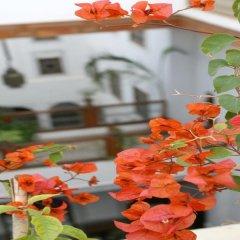 Отель Dar Al Andalous Марокко, Фес - отзывы, цены и фото номеров - забронировать отель Dar Al Andalous онлайн фото 9