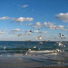 Мини-отель Stella Residence Club Одесса пляж фото 2