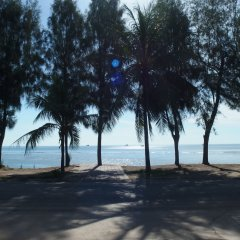 Отель Palm Beach Resort пляж