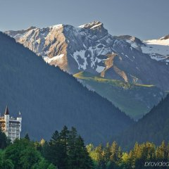 Отель Gstaad Palace фото 7