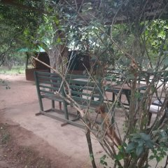 Отель Yala Wild House фото 3