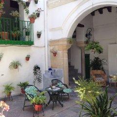 Отель Apartamentos Jerez Испания, Херес-де-ла-Фронтера - отзывы, цены и фото номеров - забронировать отель Apartamentos Jerez онлайн фото 15