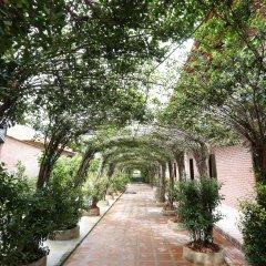 Отель Countryside Garden Resort & Bar фото 11