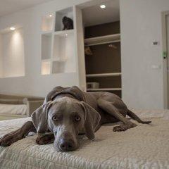 Hotel Principe с домашними животными