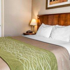 Отель Comfort Inn At LaGuardia Airport США, Нью-Йорк - отзывы, цены и фото номеров - забронировать отель Comfort Inn At LaGuardia Airport онлайн комната для гостей фото 4