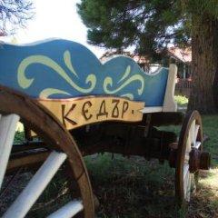 Отель Holiday Village Kedar Болгария, Долна баня - отзывы, цены и фото номеров - забронировать отель Holiday Village Kedar онлайн фото 5