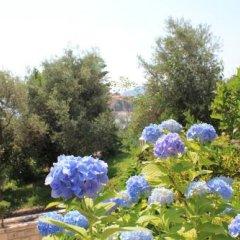 Отель Sun Rose Apartments Черногория, Свети-Стефан - отзывы, цены и фото номеров - забронировать отель Sun Rose Apartments онлайн фото 6