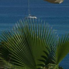 Отель Valemare Италия, Тропея - 1 отзыв об отеле, цены и фото номеров - забронировать отель Valemare онлайн пляж фото 2