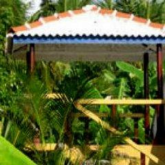 Отель Mangrove Villa Шри-Ланка, Бентота - отзывы, цены и фото номеров - забронировать отель Mangrove Villa онлайн бассейн