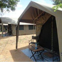 Отель Mahoora Tented Safari Camp - Kumana Шри-Ланка, Яла - отзывы, цены и фото номеров - забронировать отель Mahoora Tented Safari Camp - Kumana онлайн фото 4