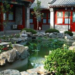 Отель Soluxe Courtyard фото 8