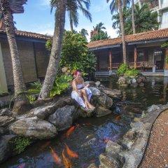 Отель Eden Resort & Spa