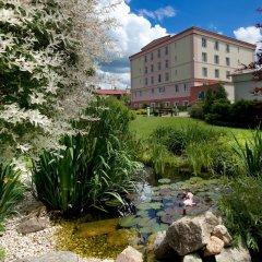 Отель Francis Palace Чехия, Франтишкови-Лазне - отзывы, цены и фото номеров - забронировать отель Francis Palace онлайн фото 7